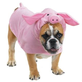 Halloween Dog Costume Clothes Apparel Piggy Pooch New