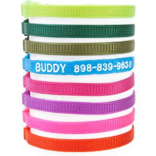Coastal Pet Products Personalized Safety Cat Collars     Collars, Harnesses & Leashes   Dog