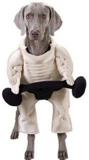 Pet Muscle Dog Halloween Costume For Small Dogs Clothing